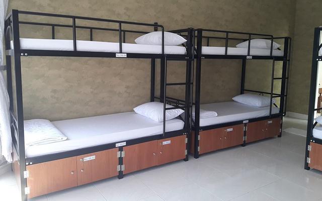 Gecko Hostel ở Vũng Tàu