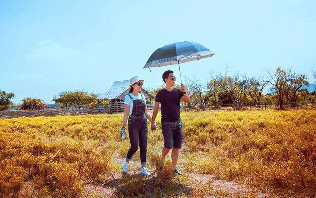 Thảo Nguyên Hoa - Long Biên ở Hà Nội