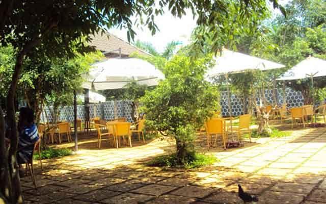 Cafe Trúc Xanh - Cafe Thư Giãn Sân Vườn ở Đắk Lắk