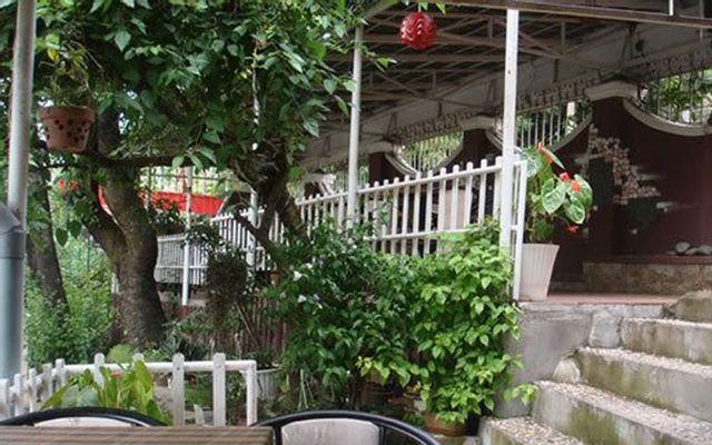 Cafe Tỉ Muội - Cafe lãng mạn ở Lâm Đồng
