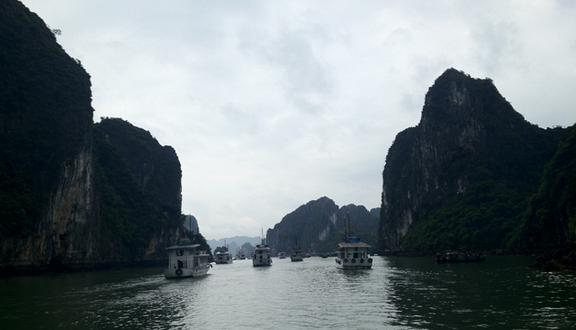 Image result for khám phá vịnh hạ long tripnow