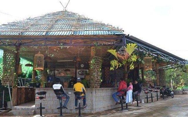 Coffee Chồn - Hương vị cafe chồn thứ thiệt ở Lâm Đồng