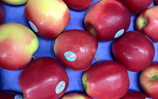 Hana Fruit - Trái Cây Nhập Khẩu - Đỗ Quang ở Đà Nẵng