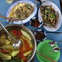 Rạch Dừa - Hồ Câu Cá Thanh Đa