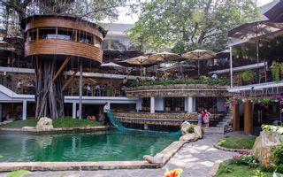 Du Miên Garden Cafe - Phan Văn Trị