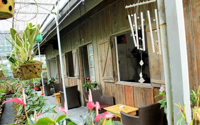 Cafe Home - Cô Giang ở Lâm Đồng