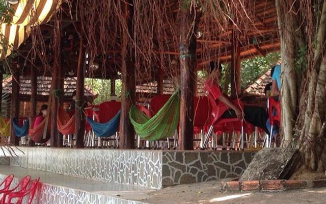 Khúc Thụy Du Cafe ở Bình Phước