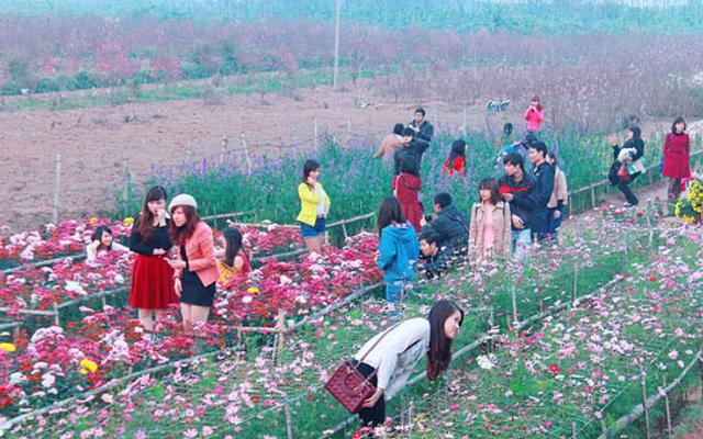 Vườn Hoa Nhật Tân ở Hà Nội