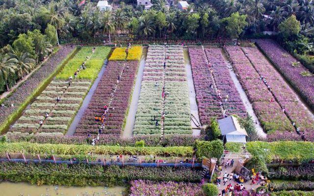 Vườn Hoa Mãn Đình Hồng ở Tiền Giang