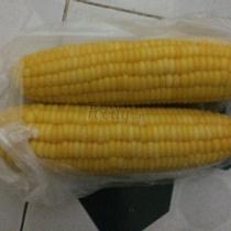 Bắp Ngọt Thái Lan