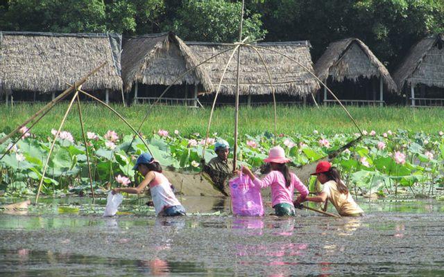 Khu Du Lịch Sinh Thái Trằm Trà Lộc ở Quảng Trị