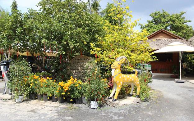 319 Quốc lộ 60, Ấp Phú Lợi, Xã Bình Phú Tp. Bến Tre Bến Tre