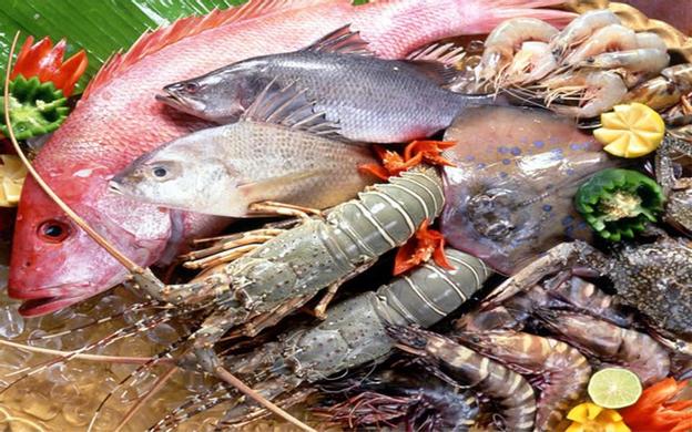 113/4/85H Võ Duy Ninh, P. 22  Quận Bình Thạnh TP. HCM