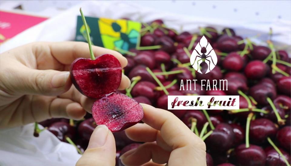 Ant Farm Shop - Trái Cây Tươi Nhập Khẩu