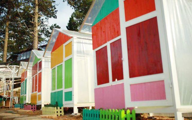 Sunny Farm ở Lâm Đồng
