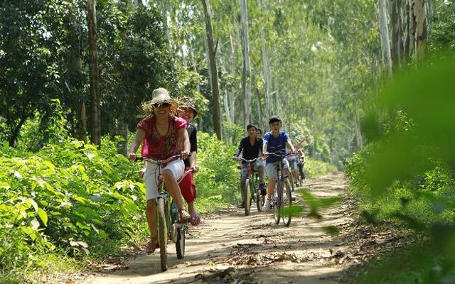 Khu Cắm Trại Dã Ngoại SonTinh Camp ở Hà Nội