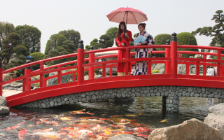 Công Viên Cá Koi Rin Rin Park - Vườn Nhật Bản