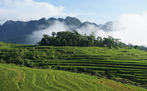 Bản Đôn, Xã Thành Lâm, Huyện Bá Thước Bá Thước Thanh Hoá