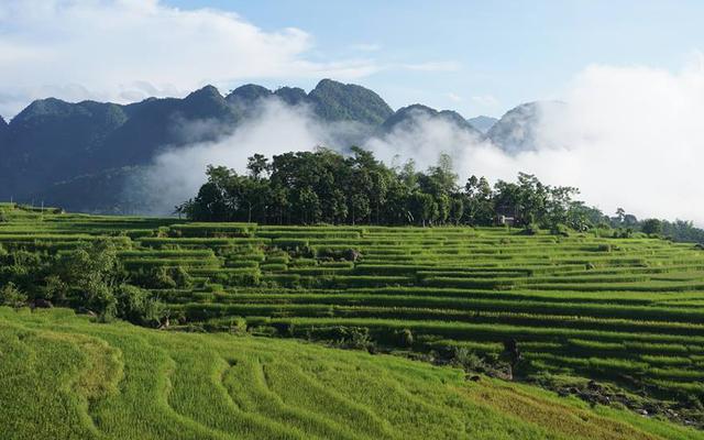 Hoanh Homestay - Pù Luông ở Thanh Hoá