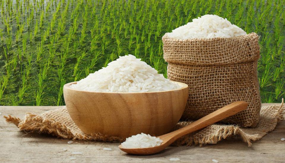 Gạo Việt - Gạo Hữu Cơ Orgagro