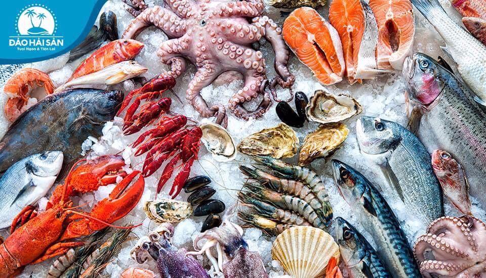 Đảo Hải Sản - Hải Sản Tươi Sống - Vườn Lài