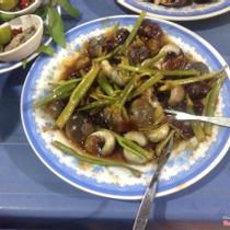 Ốc Ti - Võ Duy Ninh