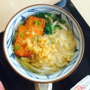 Udon Kake